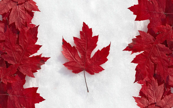 http://auxiliummortgage.com/new-to-canada-mortgage/