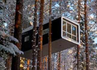 Hotel na drzewie