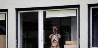 Okno za szybą którego stoi plasitkowy model wnętrzności człowieka