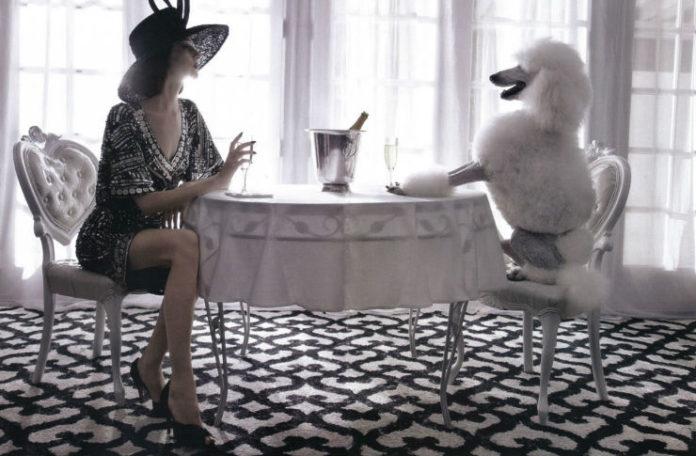 Kobieta siedząca przy stoliku z pudlem, pudel siedzi na krześle