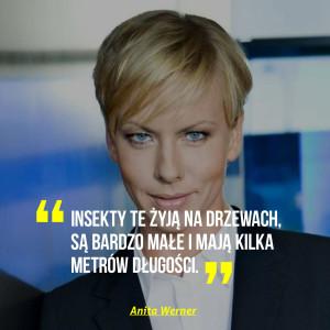 Anita Werner HHIRO