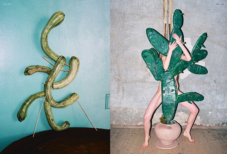 cactus digitale project11