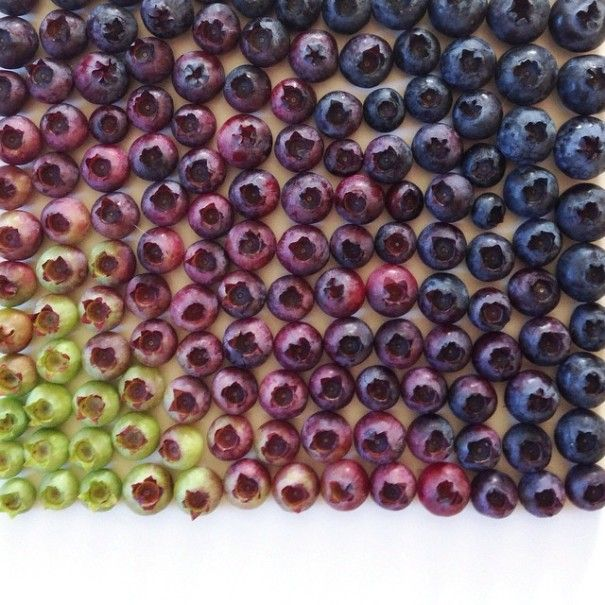 colorful-food-arrangement-photography-foodgradients-brittany-wright-6-605x605