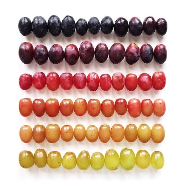 colorful-food-arrangement-photography-foodgradients-brittany-wright-8-605x605