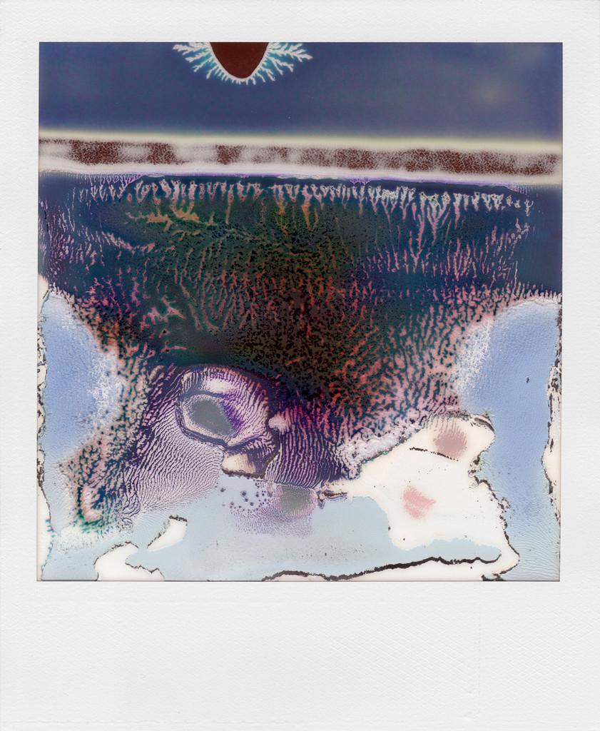 Ruined Polaroid 14