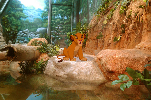 the-lion-king-jeff-hong
