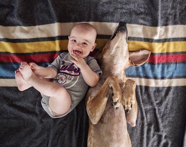 lifedog14