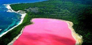 Różowe jezioro pośrodku terenów zielonych