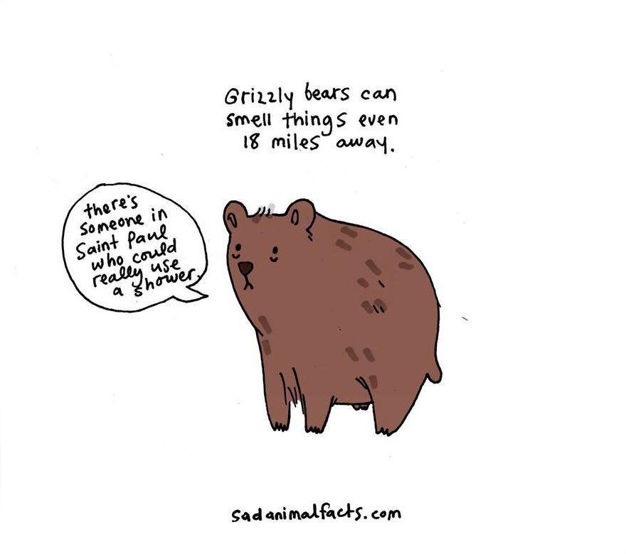 cute-illustrations-sad-animal-facts-brooke-barker-16__880