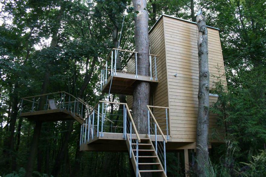 Apartamenty na drzewie