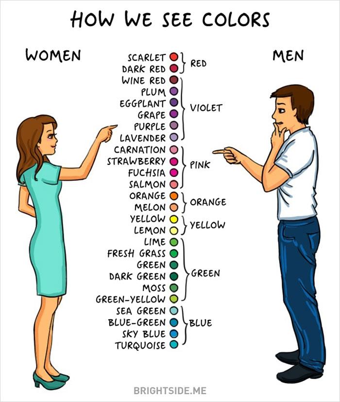 men-women-differences-comic-bright-side-24__700