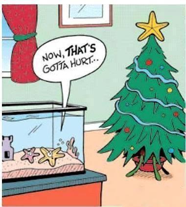 Funny-christmas-star-cartoon