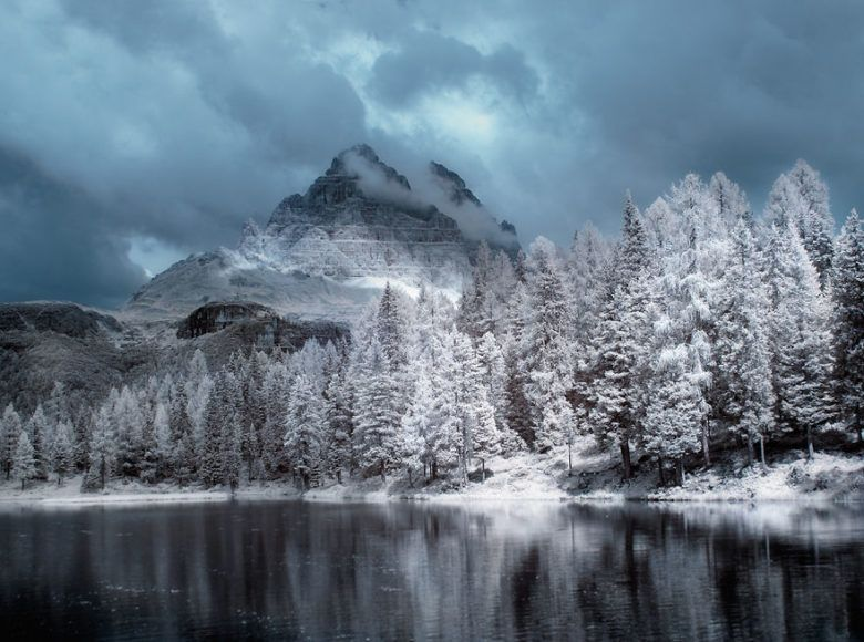 the-majestic-beauty-of-trees-captured-in-infrared-photography-5__880