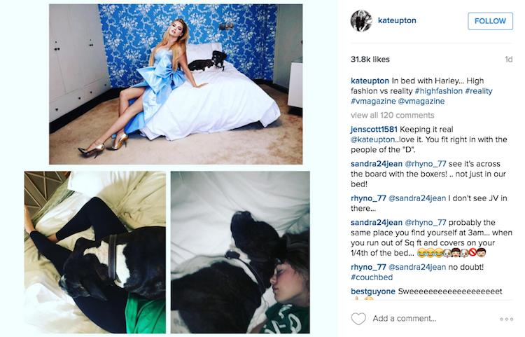 Skrinshot postu Kate na Instagramie - zdjecia z psem