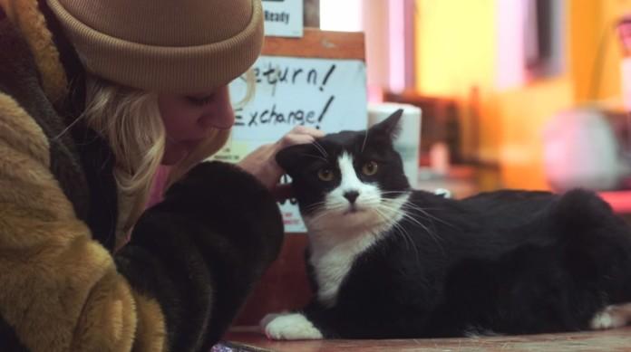blondynka w brązowej czapce głaszcząca czarnego kota