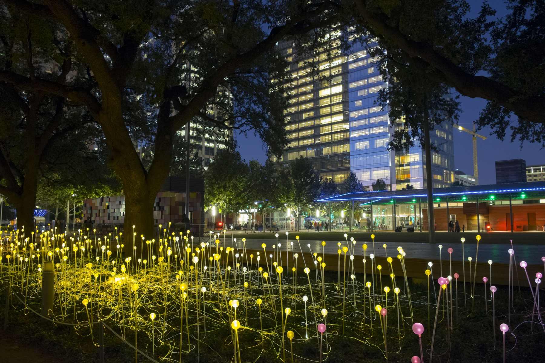 Park, wieczorem oświetlony lampkami ledowymi