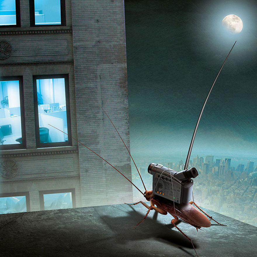surrealistyczna grafika Igora Morskiego, robak z kamerą na grzbiecie, obserwujący życie ludzi przez okno