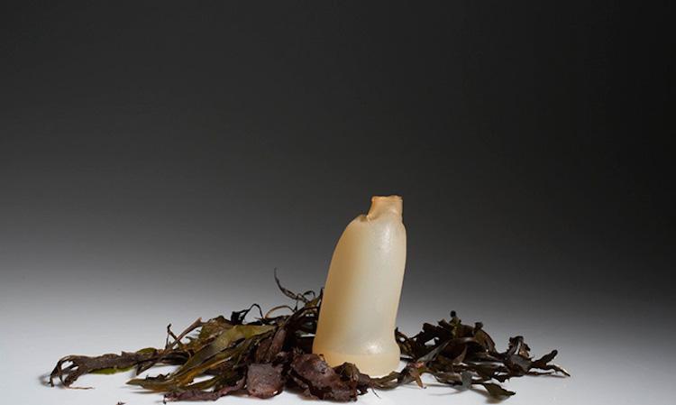 butelka-z-alg3