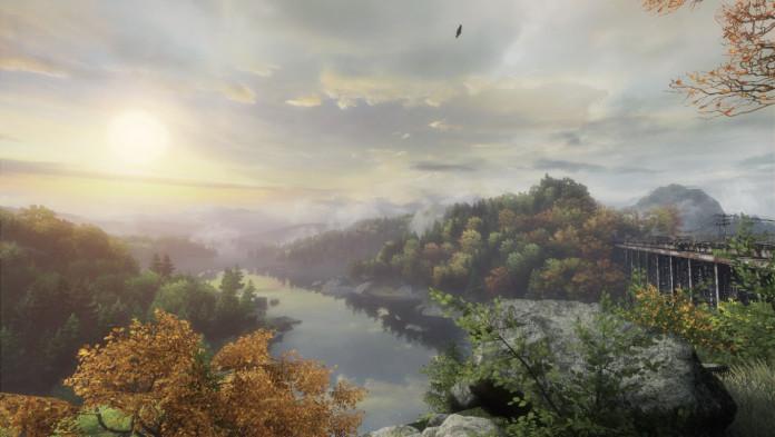 lasy i rzeka