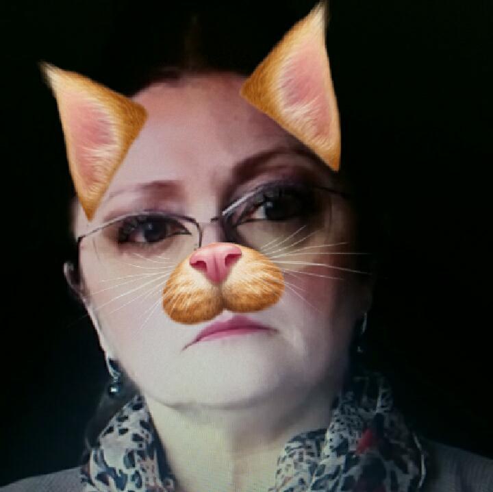Krystyna Pawłowicz, filtr ze snapchata, kot