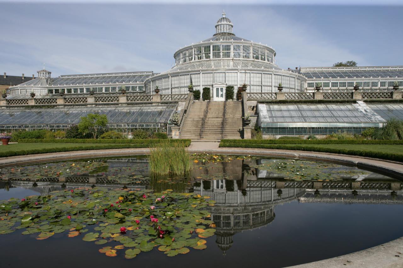 Ogród botaniczny w Kopenhadze