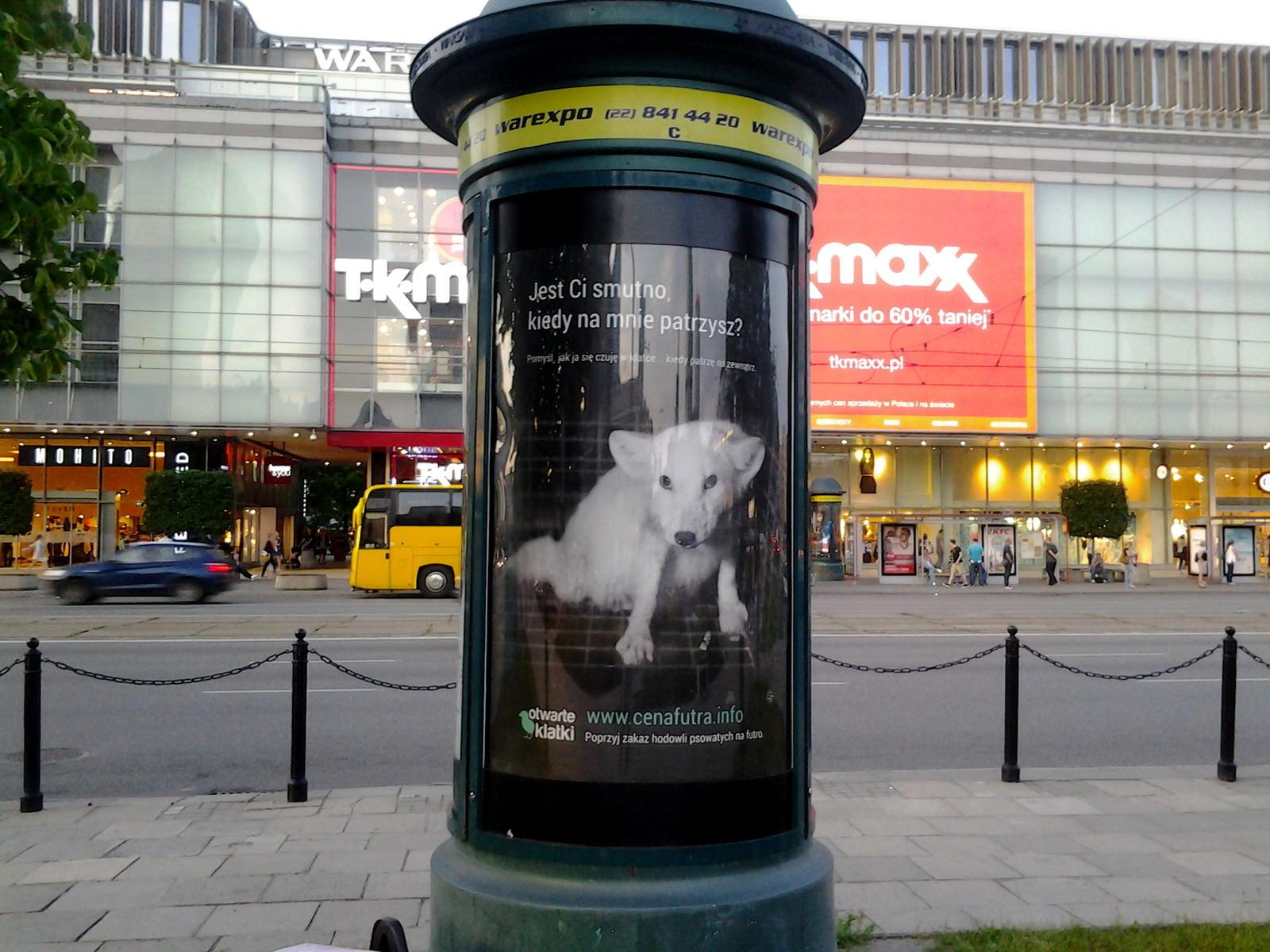 Plakat o futrach na slupie ogłoszeniowym