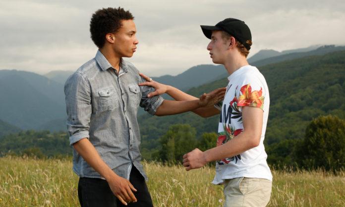 Dwóch chłopaków na łące rozmawia