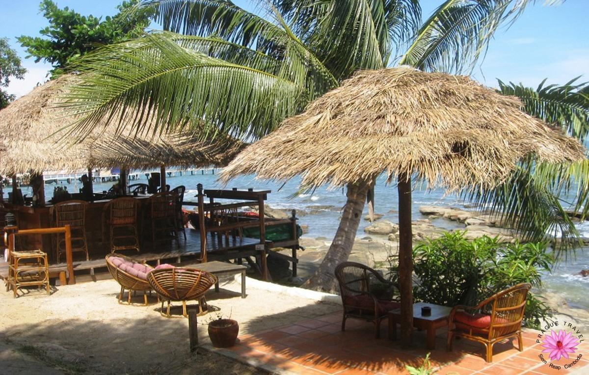 Chatki na plaży, palmy