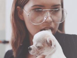 Dziewczyna z rozchylonymi ustami, w przezroczystych okularach, czarnej marynarce trzymająca małego pieska