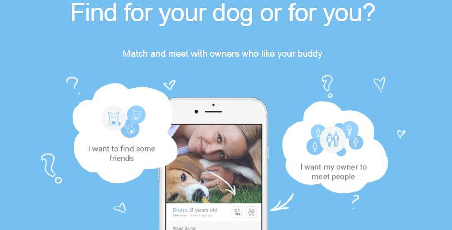 Reklama aplikacji Tindog