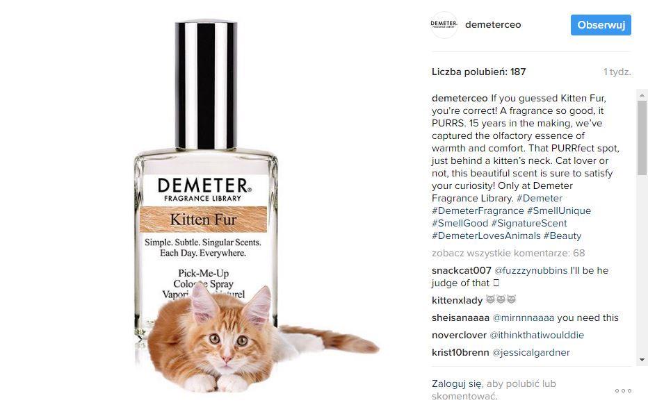 obrazek przedstawia zrzut z instagrama z zapowiedzią perfum o zapachu kocich karków