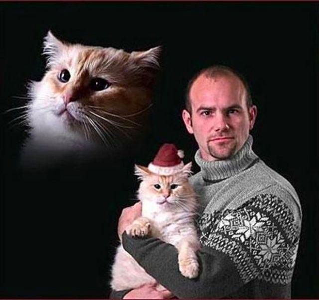 Mężczyzna w swetrze trzyma na rękach kota ubranego w świąteczną czapeczkę