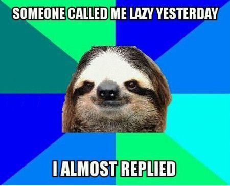 obrazek przedstawia mem z leniwcem