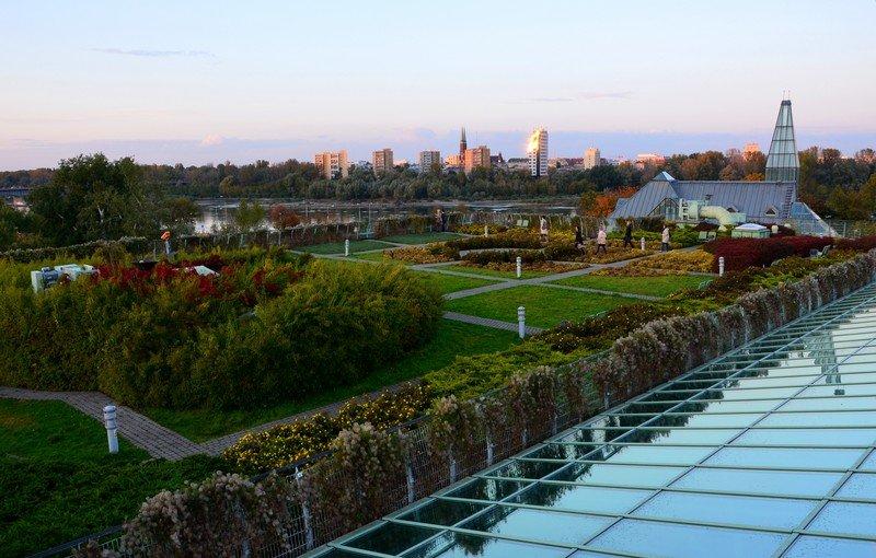 Na zdjęciu widzimy ogród na dachu Biblioteki Uniwersytetu Warszawskiego, a w oddali panoramę Warszawy.
