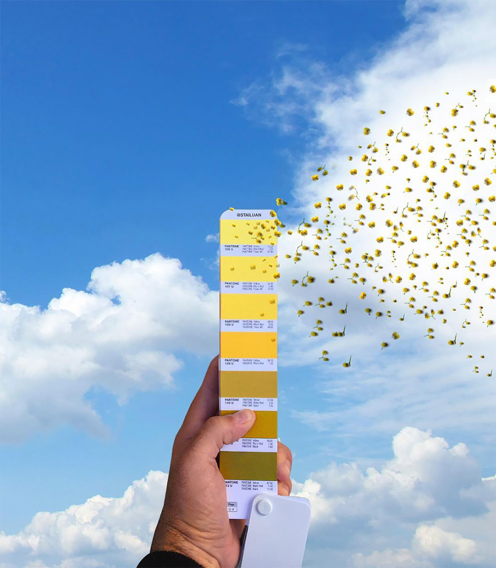 Ręka trzymająca próbnik kolorów Pantone z żółtymi kolorami na tle błękitnego nieba i motyli