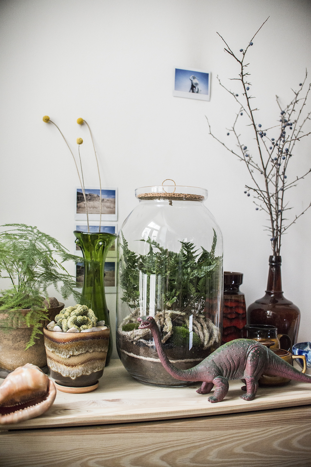 Stolik z roślinami w doniczkach i słoikach