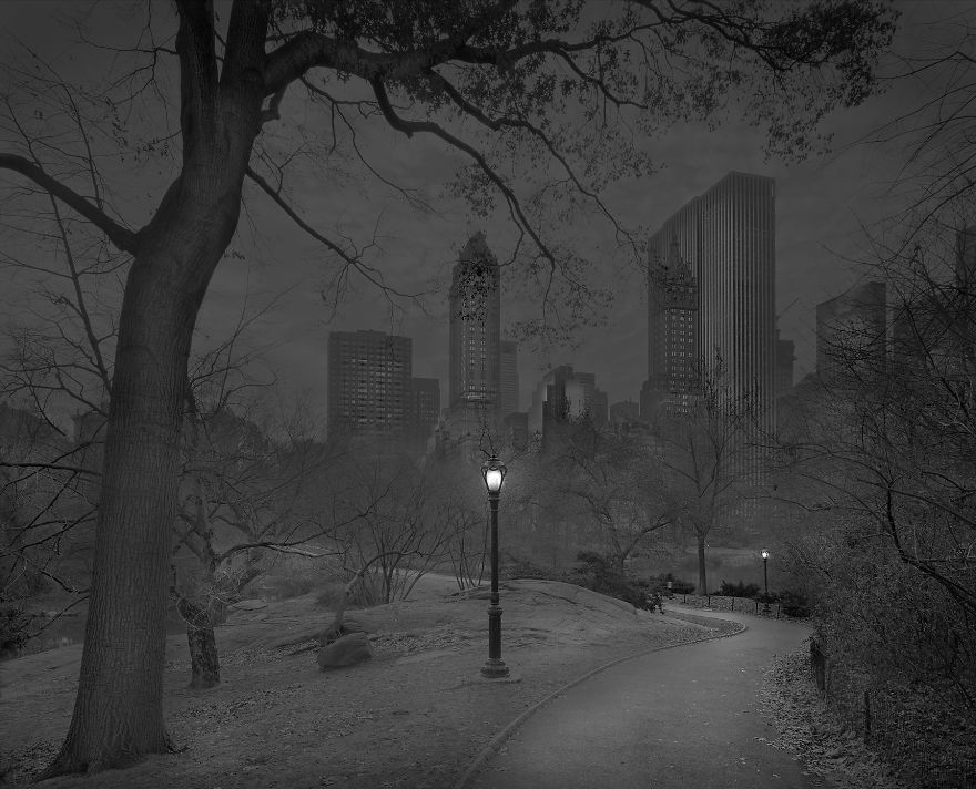 Zdjęcie przedstawia parkową aleję i stojącą przy niej latarnię. W tle znajdują się budynki wieżowców