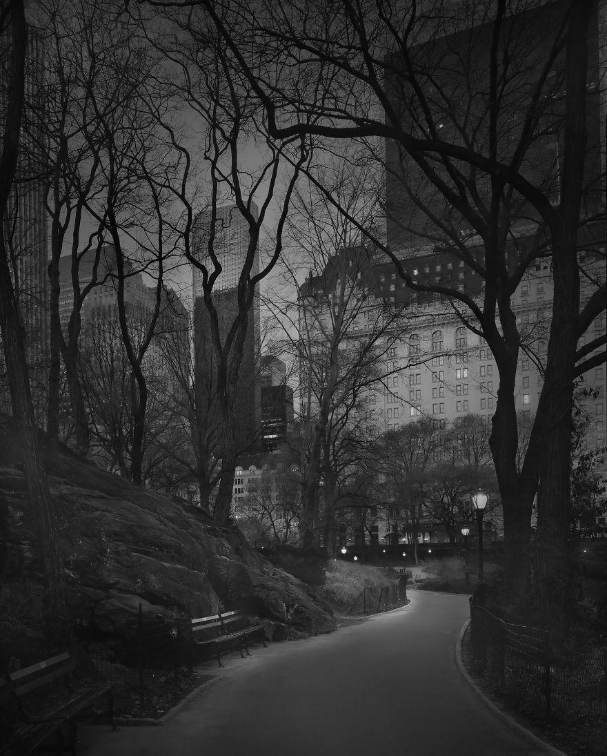 Zdjęcie przedstawia drogę między drzewami