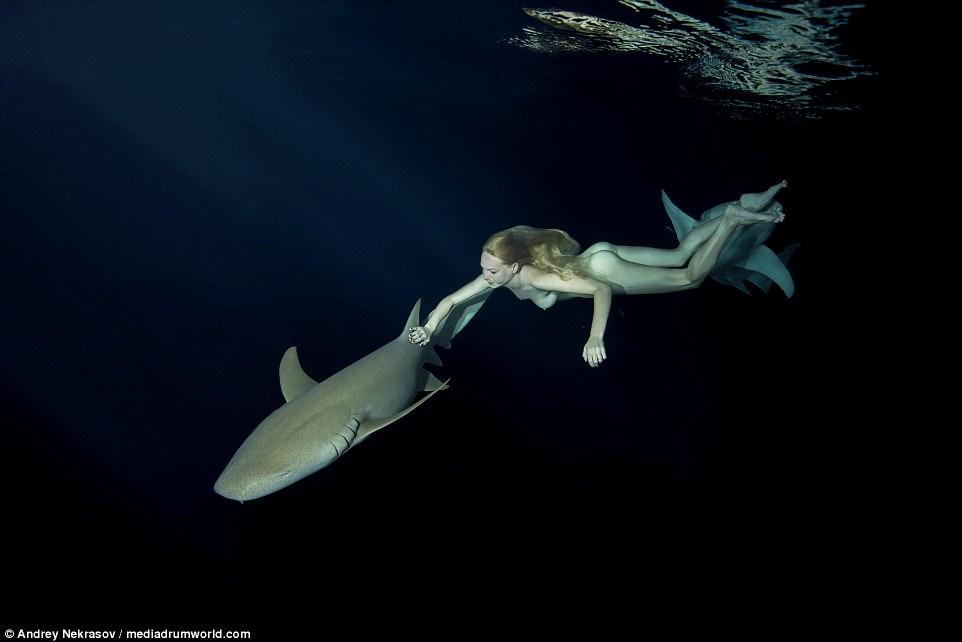 Biała, naga kobieta pływająca pod wodą z dwoma rekinami