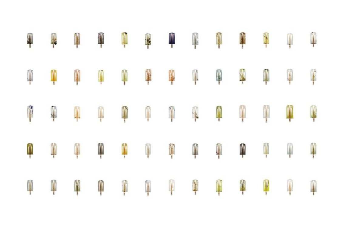 na zdjęciu widać zestawienie ponad 100 lodów na patyku zanieczyszczonych odpadkami