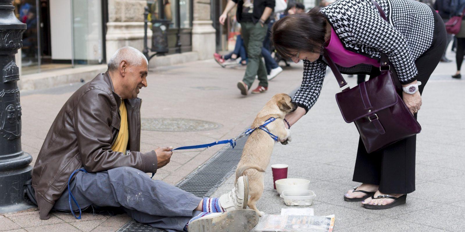 Zdjecie bezdomnego z psem, przy ktorych zatrzymala sie kobieta. Ona bawi się z psem, on siedzi na ulicy. Pies szczeniaczek, jest trzymany na smycyz przez bezdomnego