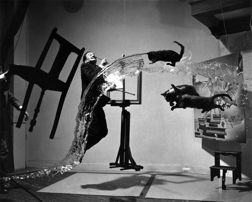Zdjęcie przedstawiające Salvadora Dalego i koty w dynamicznej kompozycji