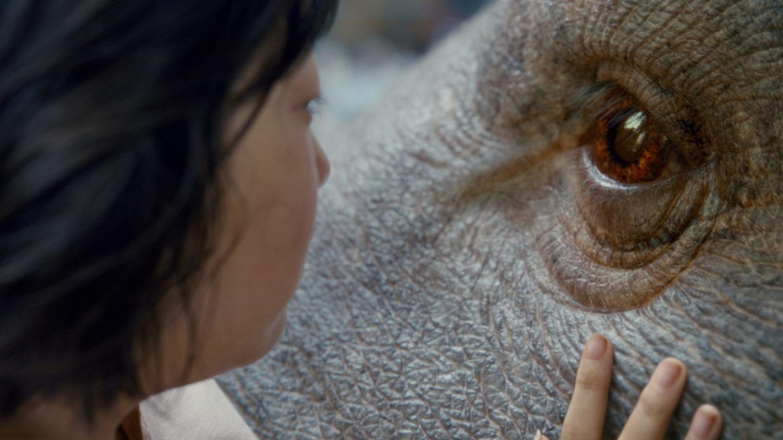 Zbliżenie na profil dziewczynki patrzącej się w oczy dużej, zmutowanej świni
