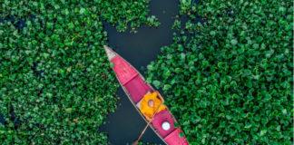 Zdjecie z lotu ptaka, ktore przedstawia mezyczna na łodce wsrod krzewów. Łodka jest w srodku rozowa, on jest ubrany w żółty kombinezon.