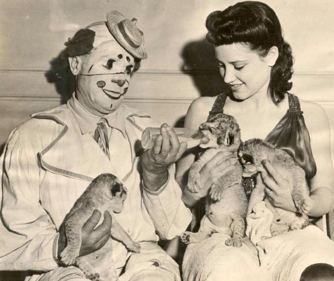 Klaun i kobieta karmią zwierzęta.