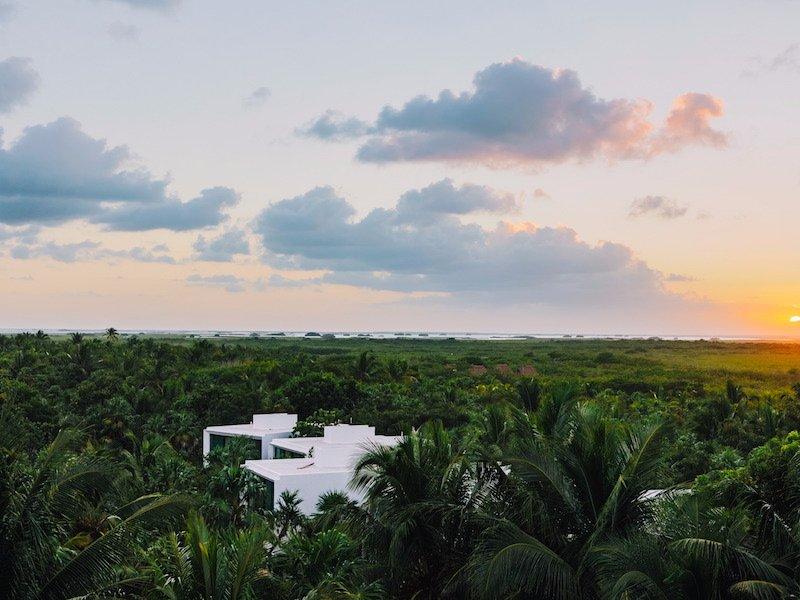 Biała posiadłość stojąca w dżungli