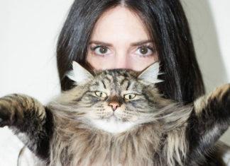 Brunetka trzymająca kota na wysokości twarzy