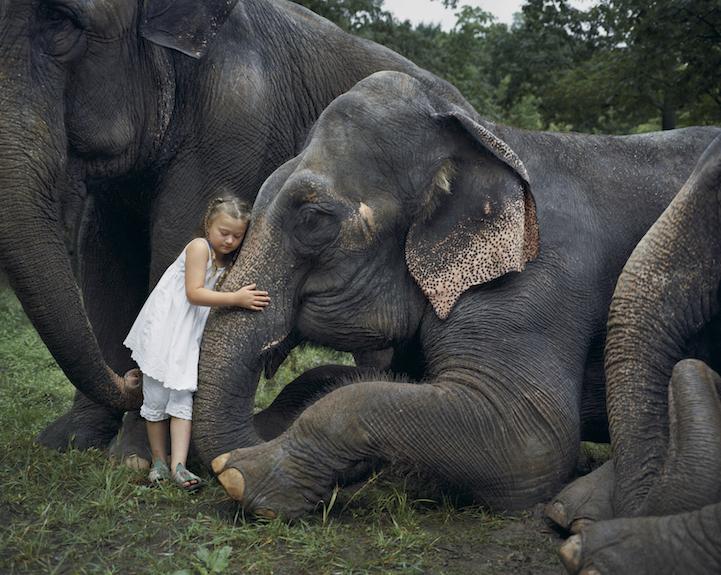 dziewczynka przytulająca słonia jak rodzeństwo