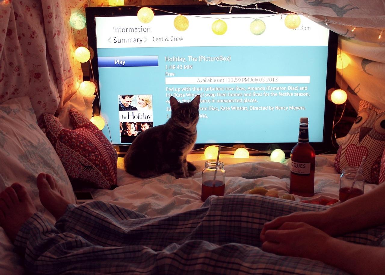 Ekran telewizora ze światełkami, kot i butelka piwa obok