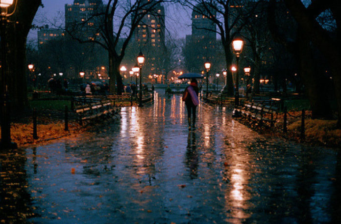 Ulica w parku zalana deszczem